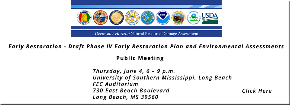 Home.PageEarly-Restoration-Draft-Phase-IV-Early-Restoration-Plan-and-Environmental-Assessments