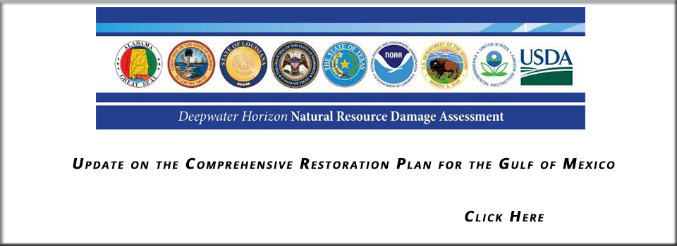 Comprehensive-Restoration-Plan-for-the-Gulf-of-Mexico-Update