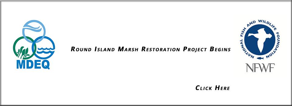 Round-Island-Marsh-Restoration-Project-Begins